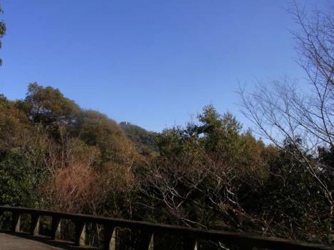 金華山-鷹巣山-11-driveway0