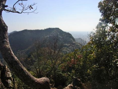 金華山-鷹巣山-25-takanosu