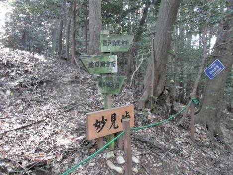金華山-鷹巣山-26-myogen