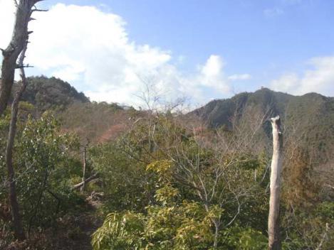 金華山-鷹巣山-35-takanosu-