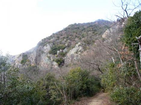 金華山-鷹巣山-37-takanosu1