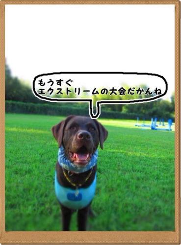IMG_1724.jpg