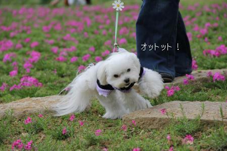 092_convert_20120504205727.jpg