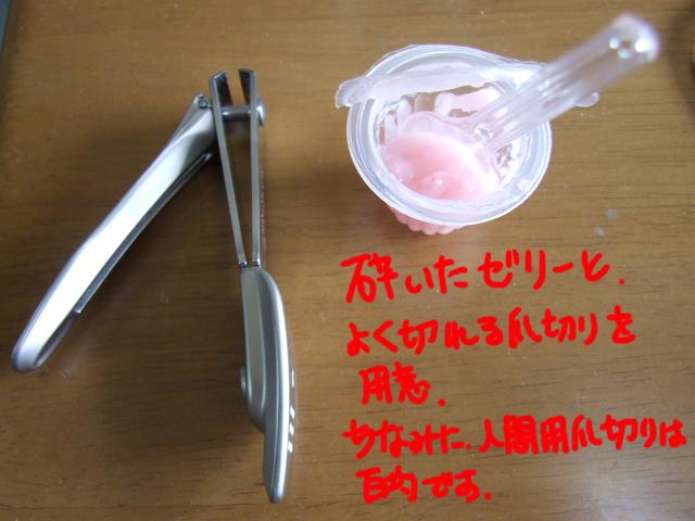 DSCF120220a9065.jpg