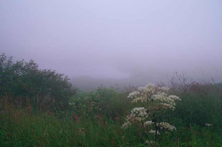 八島ヶ原湿原の夜明け