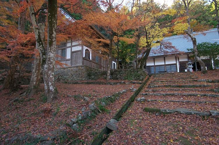 晩秋の大洞院 3