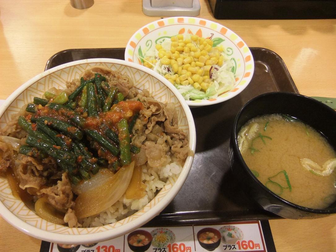 すき家:ニンニク牛丼サラダセット 11.09.12