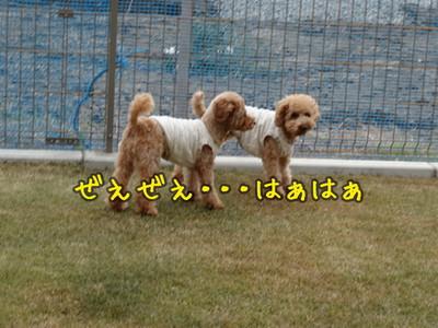 kako-lDbMcuC64WaQC7Rc.jpg