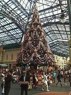 TDL クリスマスツリー