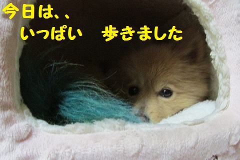 IMG_0624.jpg
