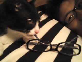 眼鏡で遊ぶらんまる