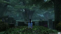 チーム拠点:森林01