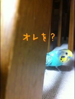 縺翫l繧抵シ歙convert_20120406123532