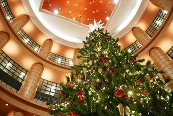 クリスマスツリー1223