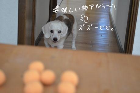 1_20110924173629.jpg