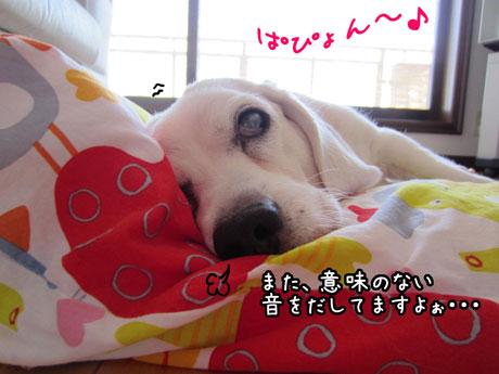 1_20111020142147.jpg