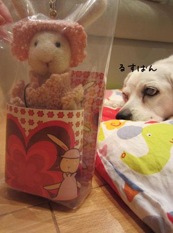 1_20111025210606.jpg