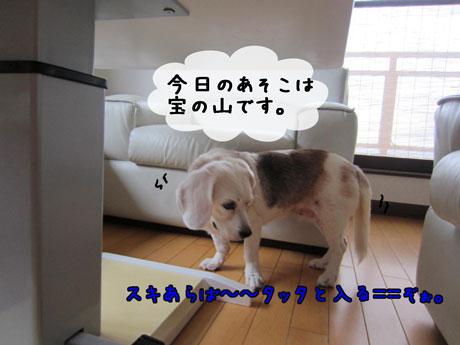 2_20110919141142.jpg