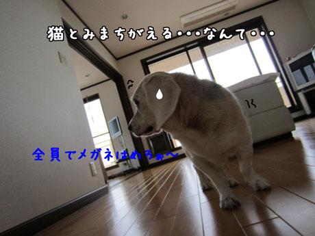 2_20110926164221.jpg