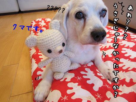 2_20111023163650.jpg