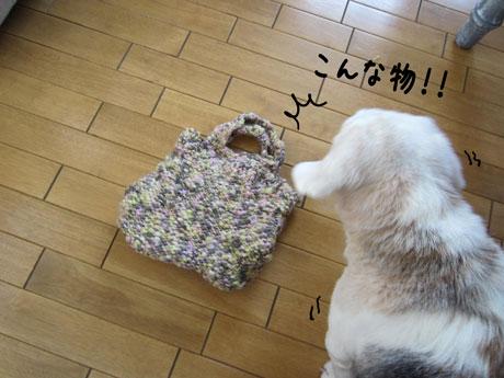 3_20111016162101.jpg