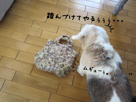 4_20111016162101.jpg