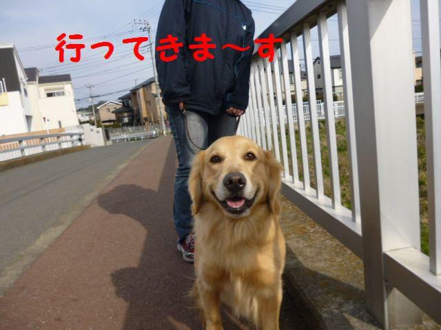 a5_20120317231307.jpg