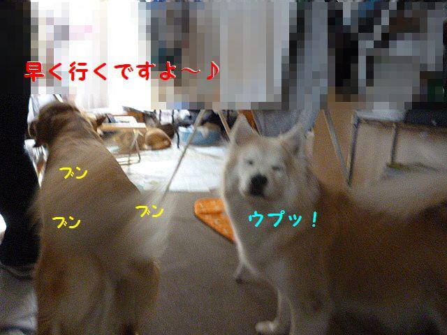 a_20120224072311.jpg