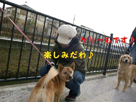 a_20120226084730.jpg