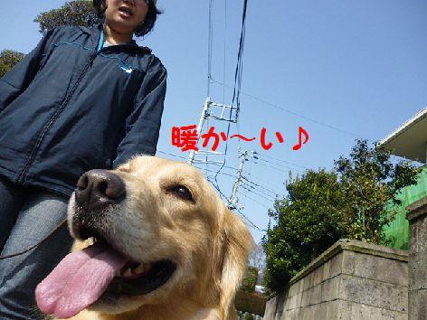 a_20120307071450.jpg