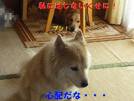 b_20120221071124.jpg