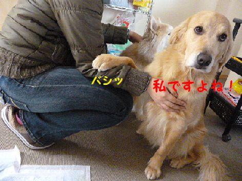 b_20120224072311.jpg