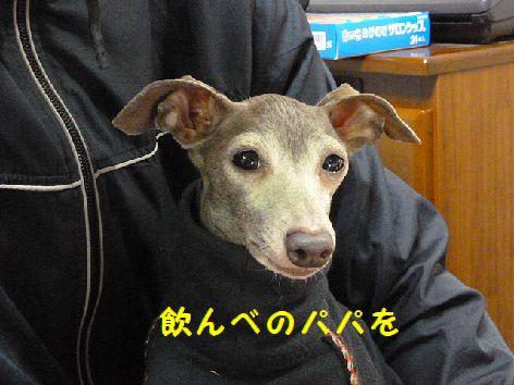b_20120315072332.jpg