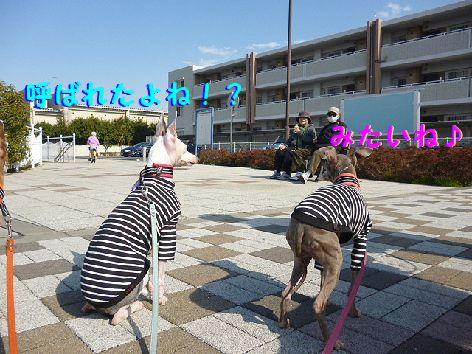 b_20120327072747.jpg