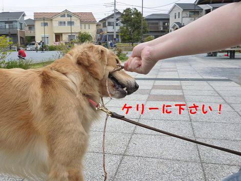b_20120418070941.jpg