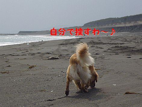 b_20120429101237.jpg