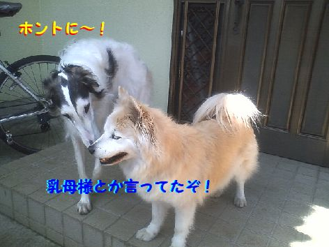 b_20130405231825.jpg