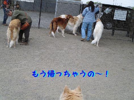 b_20130421085256.jpg