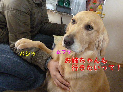 c_20120224072311.jpg