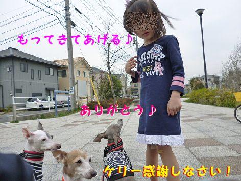c_20120418070940.jpg
