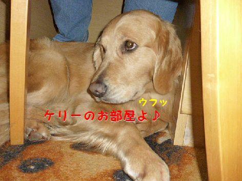 c_20120423071749.jpg