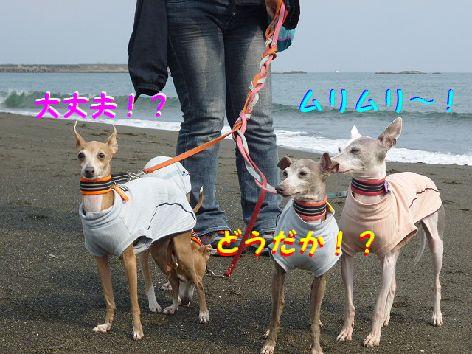 c_20120429101236.jpg