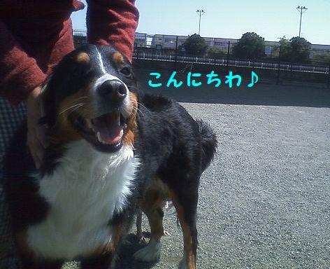 c_20130413104340.jpg