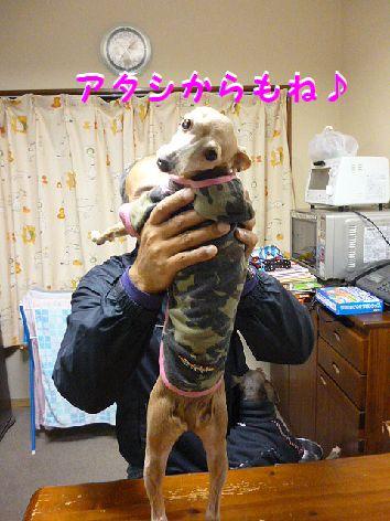 d_20120315072331.jpg
