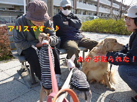 d_20120327072746.jpg