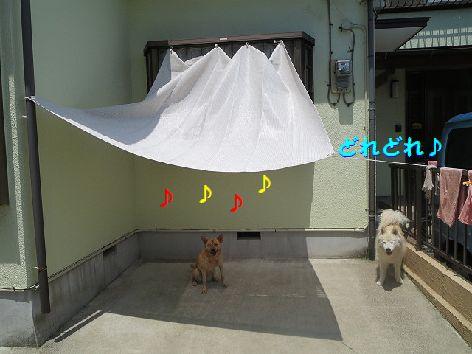 d_20130704074016.jpg