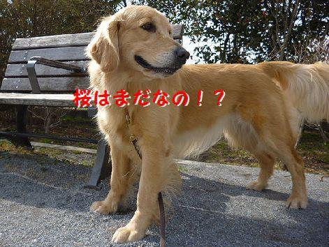 e_20120229072255.jpg