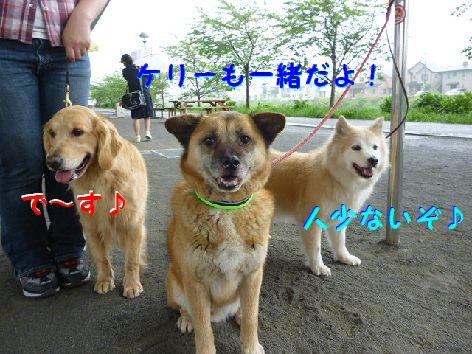 e_20120503094630.jpg