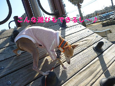 f_20120221071124.jpg