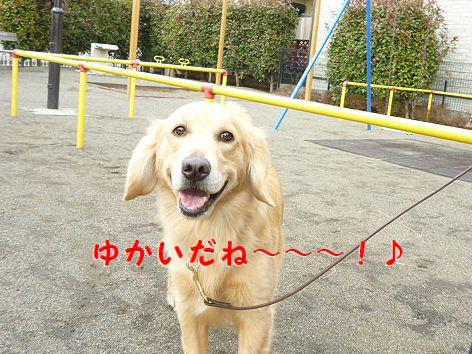 f_20120225094250.jpg